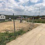 Vadháló kerítés Budapest kiskapuval